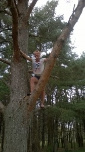 Cheryl demonstrates her amazing tree climbing skills